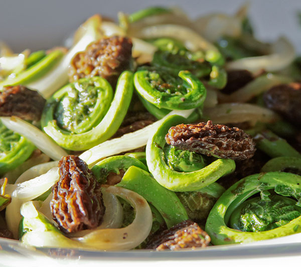Fiddlehead and morel stir fry